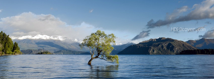 tree-in-river-landscape-fbcover.jpg